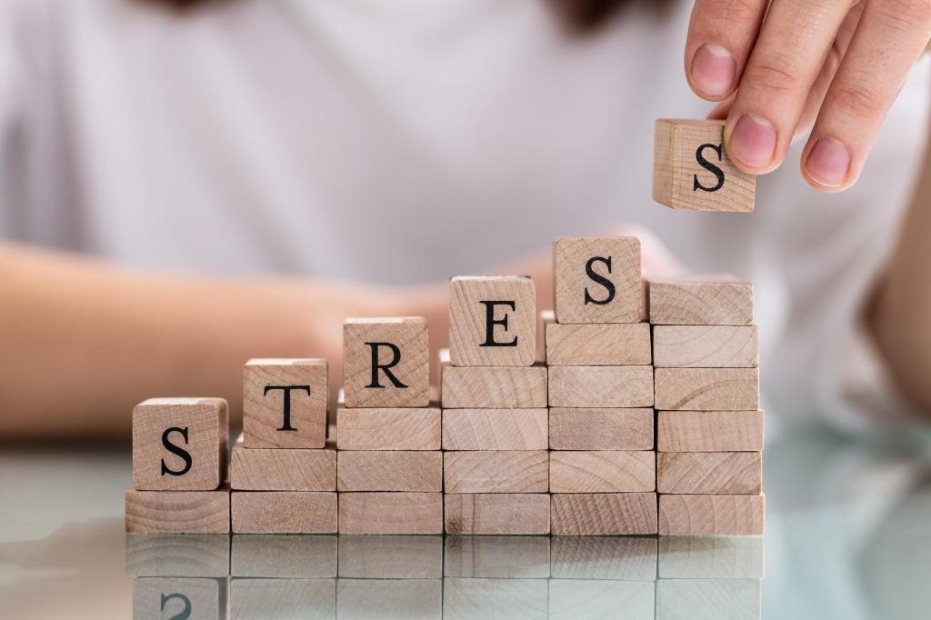 たんぱく質がストレスに関係?