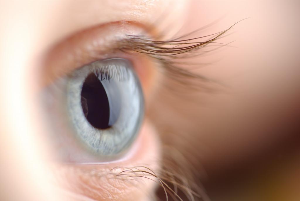 CBDは眼の病気にも効果的?【海外の研究】